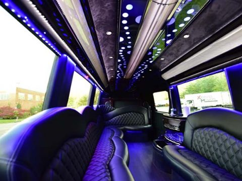 Mercedes Sprinter Luxury Interior