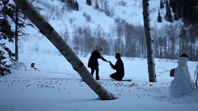 Perfect Winter proposal