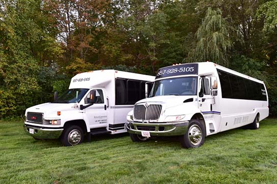Big Party Buses for Rental