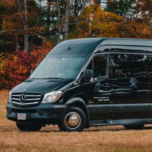 Mercedes Sprinter Limousine